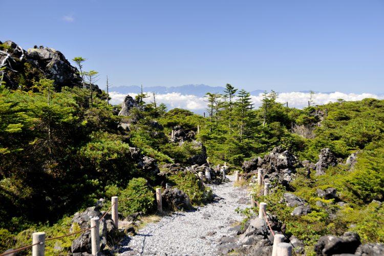 GoToトラベル事業支援対象<br>北八ヶ岳ロープウェイと坪庭散策<br>創作和フレンチ&蓼科温泉