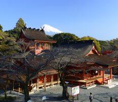 世界遺産富士山信仰の浅間四社と忍野八海
