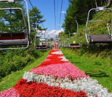 天空のリゾート<br>花絨毯のヘブンスそのはらと豪快天竜舟下り