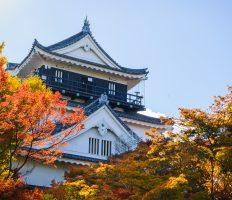 GoToトラベル事業支援対象<br>豪華絢爛!<br> 徳川歴史と聖域・熱田神宮