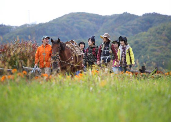 木曽馬とウォーキング<br>木曽開田高原でヘルスツーリズム体験
