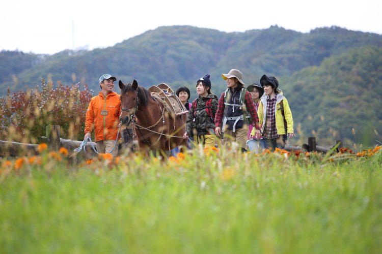 <中信発着>木曽馬とウォーキング<br>木曽開田高原でヘルスツーリズム体験