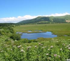 霧ヶ峰高原の大自然を堪能<br>専門ガイドと歩く 国指定天然記念物「八島ヶ原湿原」